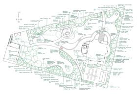 Дендроплан показывает все существующие и планируемые для посадки растения, их наименование (вид, сорт) и схематическое расположение на территории. Ландшафтный дизайн проект